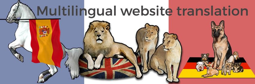 Công ty dịch thuật webiste chuyên nghiệp